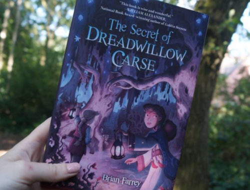 Review Buku Novel The Secret of Dreadwillow Carse