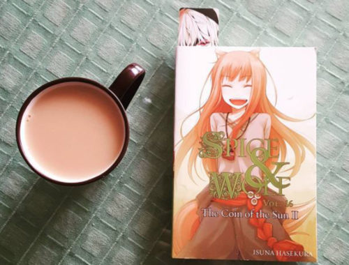 Review Buku Novel Spice and Wolf