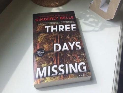 Review Buku Novel Three Days Missing