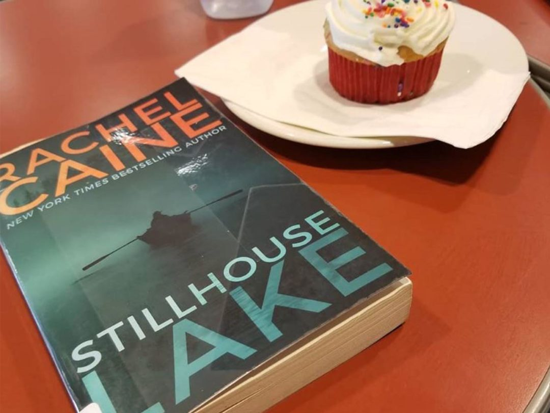 Review Buku Novel Stillhouse Lake