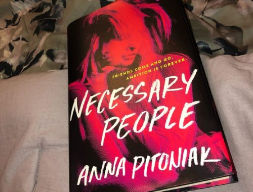 Review Buku Novel Necessary People